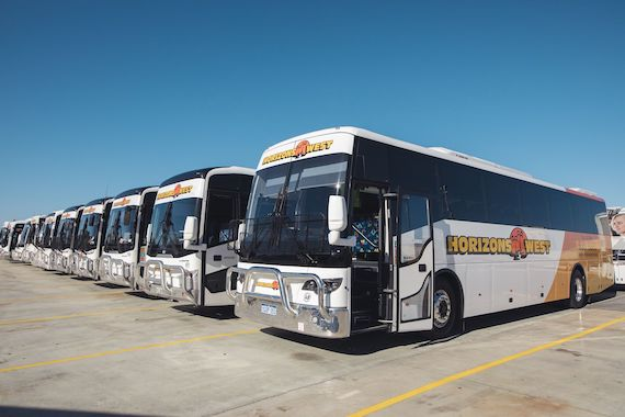 coach busses lined up